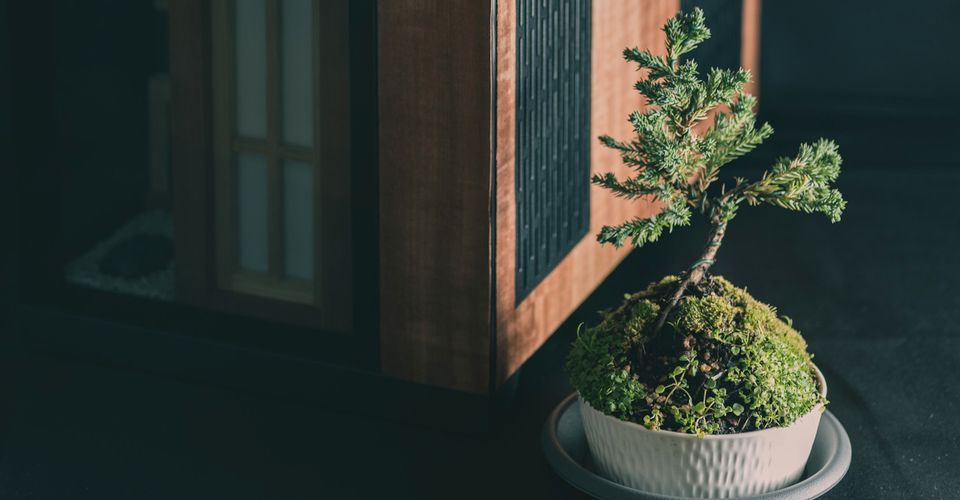 AMD-Inspired Zen Computer Comes With its Own Bonsai