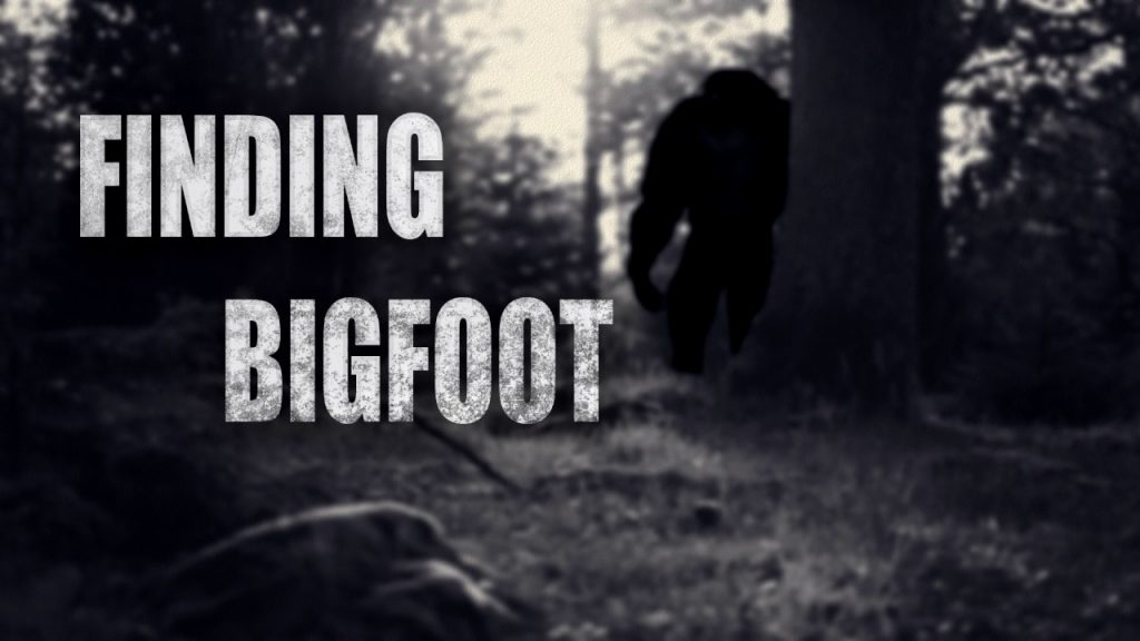 Finding Bigfoot PC Full Version Free Download