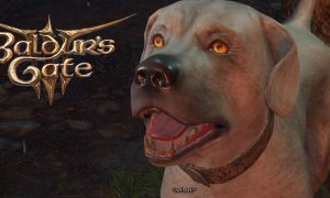 Baldur's Gate 3 Players Have Pet the Dog 400 Thousand Times
