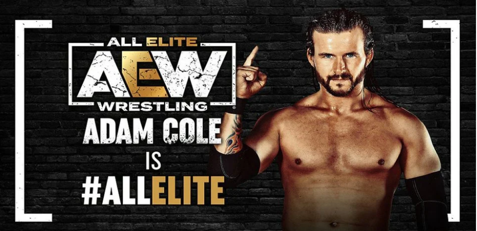 AEW Video Game Roster Can Now Add Adam Cole and Bryan Danielson to the Mix