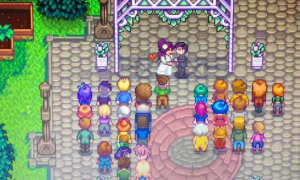 Stardew Valley Has a Marriage Problem